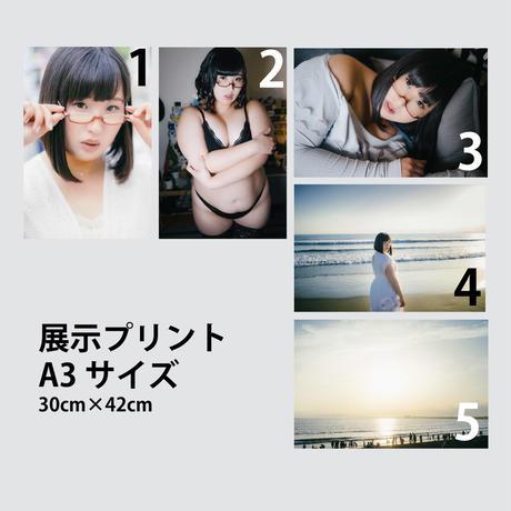 #さよなら百合華てん 展示プリントA3サイズ