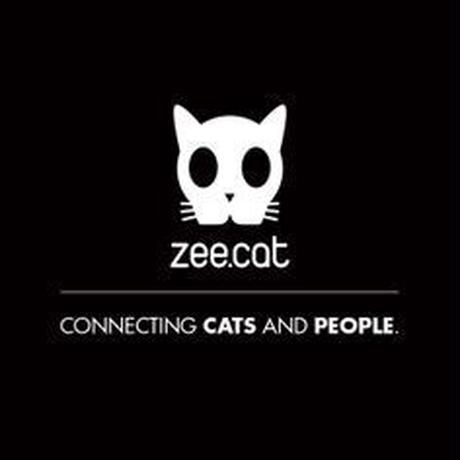 2962 zee.cat PANTOM COLLAR ジーキャット ファントムカラー