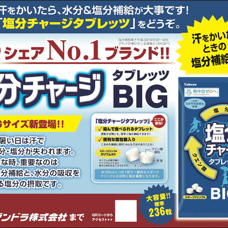 塩分チャージタブレッツBIG・1袋(236粒)×6袋(1箱)