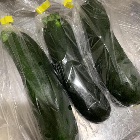 【ギフトにも】初夏の野菜4種お試しセットS