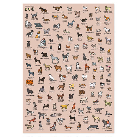 DOG BREEDS (600 x 900) | Graphic Dictionary Poster