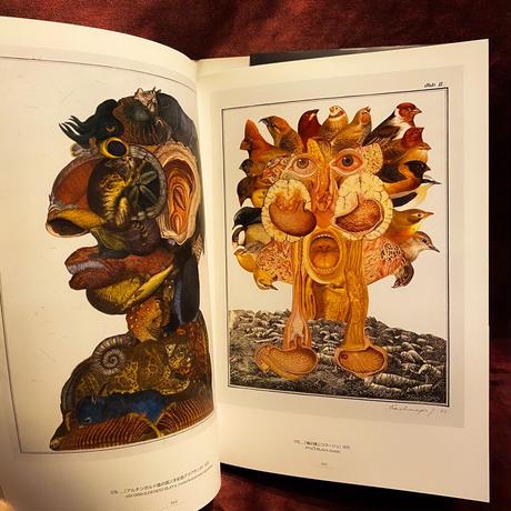 ヤン・シュヴァンクマイエル『シュバンクマイエルの博物館』