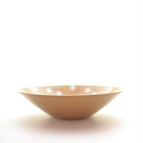 マルチ碗 ナンキンハゼ