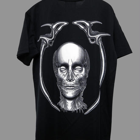 Face and pelvis   DRY-Tshirt