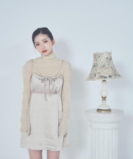 sheer turtle neck  (2colors)