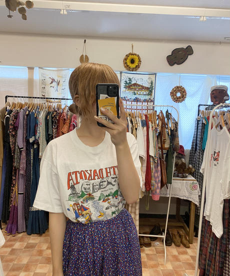 世界遺産を楽しむTシャツ3673