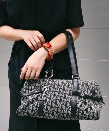 Christian dior/ Trotter logo design hand bag