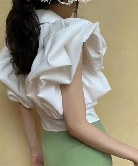 Volume ruffle sleeve blouse