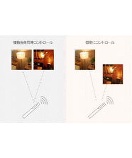 ART WORK STUDIO Easy-lighting 照明専用リモコン 1口タイプ 調光機能付 TK-2062