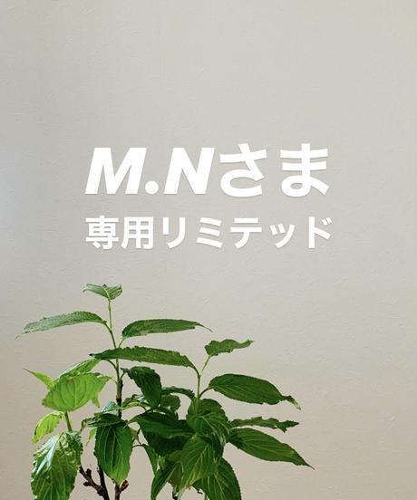 M.Kさま専用リミテッドpage