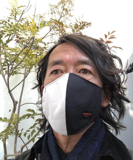 SPEED  Mask / Asymmetry