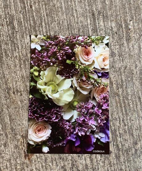 オリジナルポストカード 7枚セット