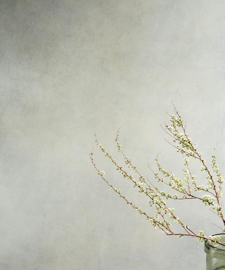 60ほのかに香るホワイトグレーニュアンスフレグランス第2世代
