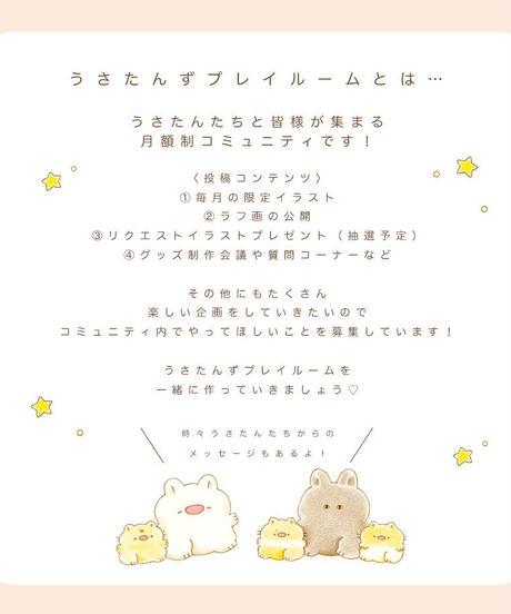 【USAGI SALON】月額制オンラインコミュニティ ~うさたんずプレイルーム~
