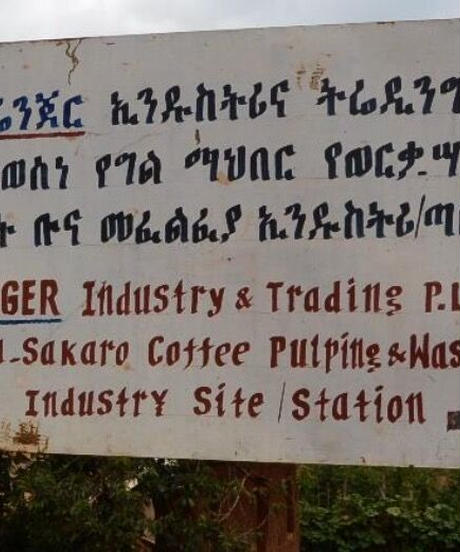 エチオピア イルガチェフ ゲデブ ウォルカ・サカロ