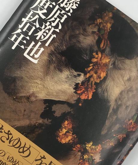 Title/印度拾年     Author/ 藤原新也