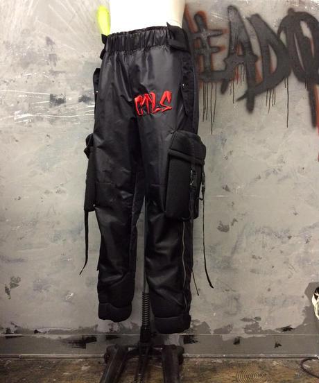 CTLS technical pants