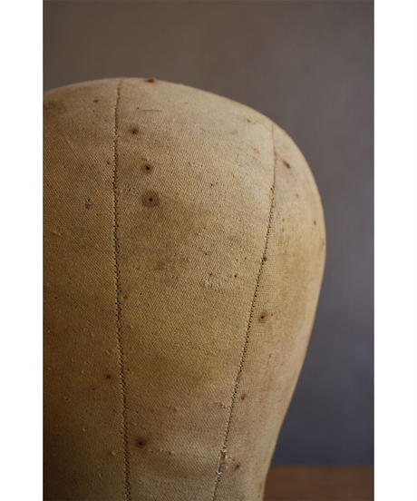 09-MT374102-2  Head mold canvas-02