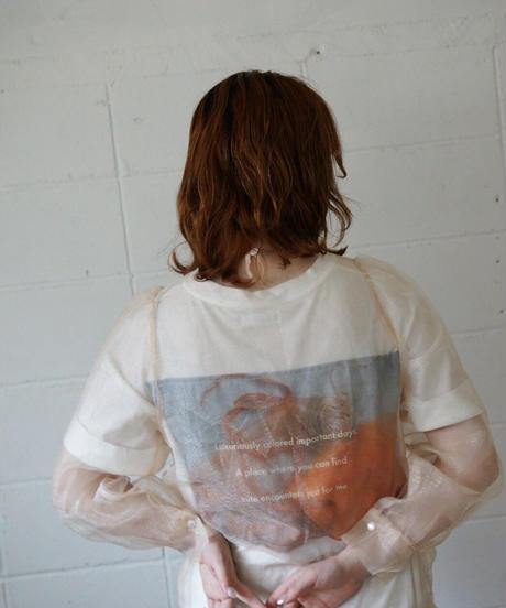 original t shirt orange