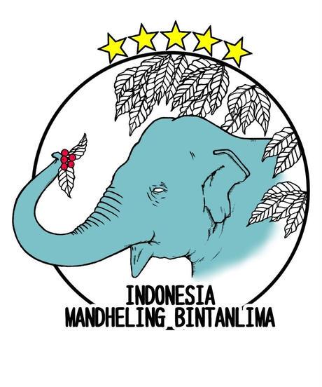 インドネシア マンデリン ビンタンリマ 深煎り 500g