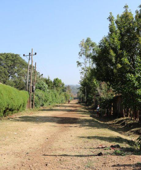 [100g中煎り]  エチオピア イルガチェフェG1 アナエロビック ナチュラル  Ethiopia Yirgacheff G1 Anaerobic Natural City Roast