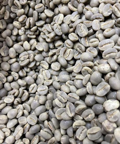 アダコーヒーアカチチ&NO.3セット ADA COFFEEE SET