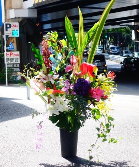 【置型】お祝い花 L (お届け先23区内のみ)