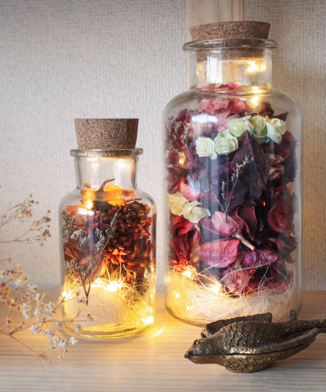 BOTTLED Botanical Light (レッド・L)