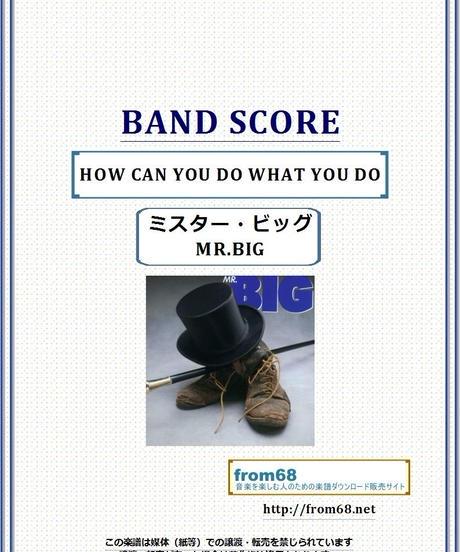 ミスター・ビッグ(MR.BIG)  / HOW CAN YOU DO WHAT YOU DO  バンド・スコア(TAB譜) 楽譜