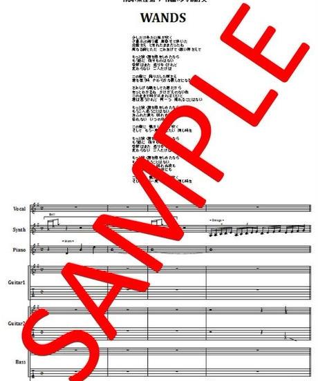 WANDS / もっと強く抱きしめたなら バンド・スコア(TAB譜)  楽譜