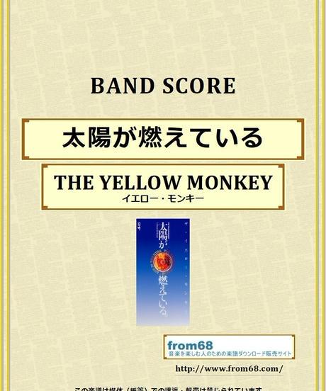 ザ・イエロー・モンキー(THE YELLOW MONKEY) / 太陽が燃えている バンド・スコア(TAB譜) 楽譜 from68