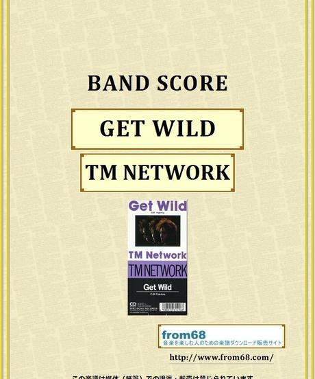 TMN (TM NETWORK) / GET WILD  バンド・スコア(TAB譜)  楽譜