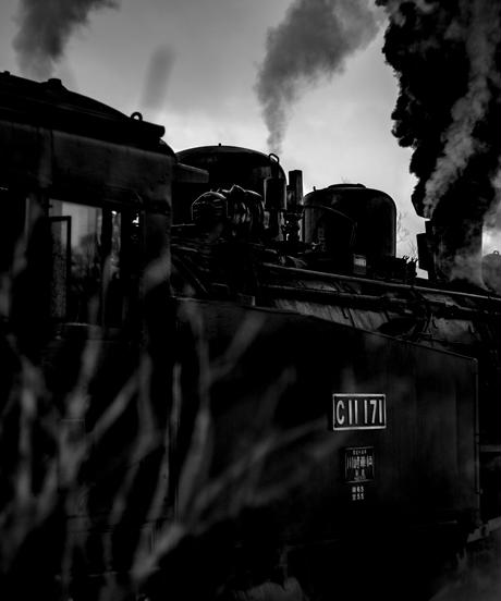 Local Train vol.5