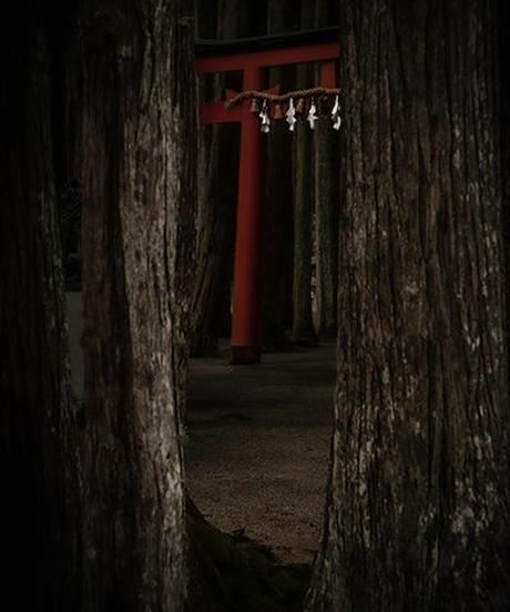Japan vol.18