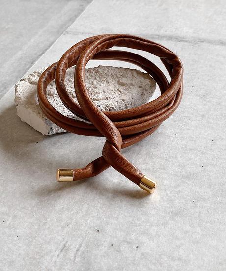 wire pony F221