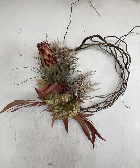 プロテアの枝みせリース