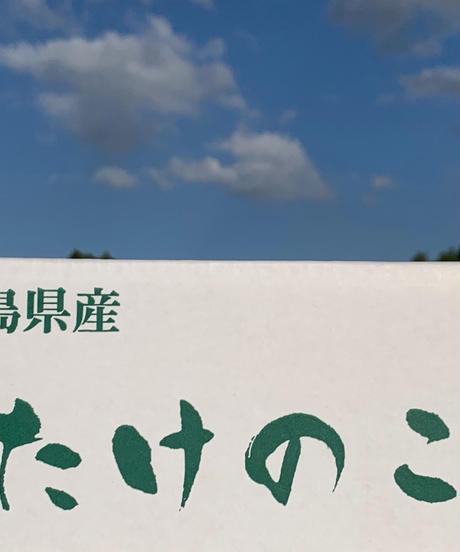 超早掘り筍:10月20~12月20「サイズ130~300g/本 (1㎏)」