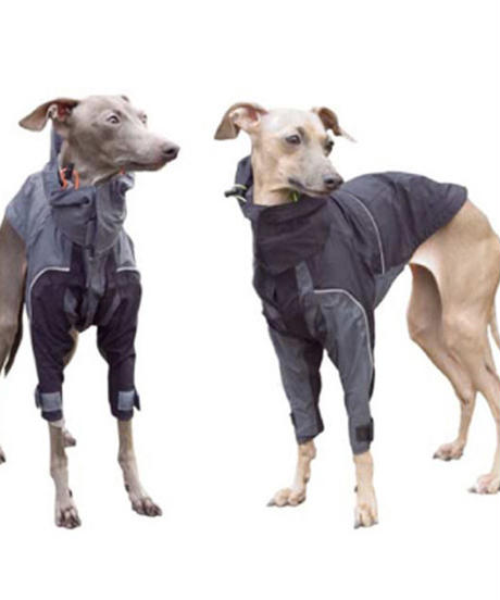GORE-JACKET For Italian Greyhound