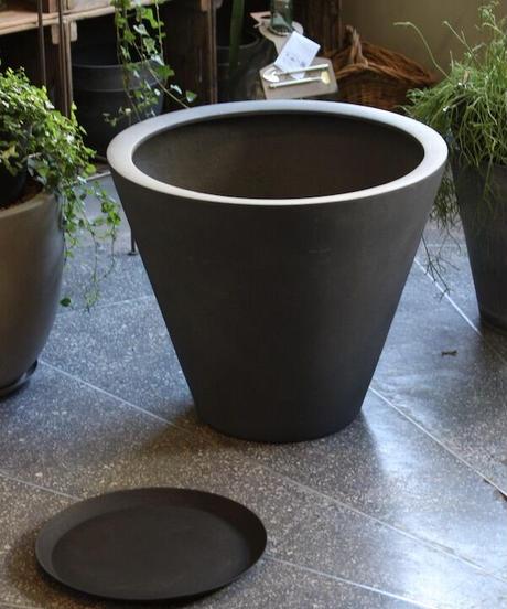 鉢皿 φ37