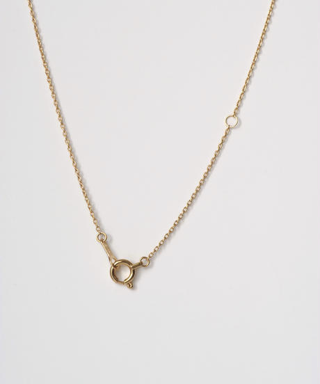 One of a kind / Natural Diamond Necklace <K18YG,PT950> - N364C