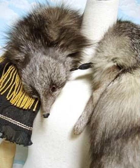 kki.1783 狐のジプシー風襟巻きケープ 。