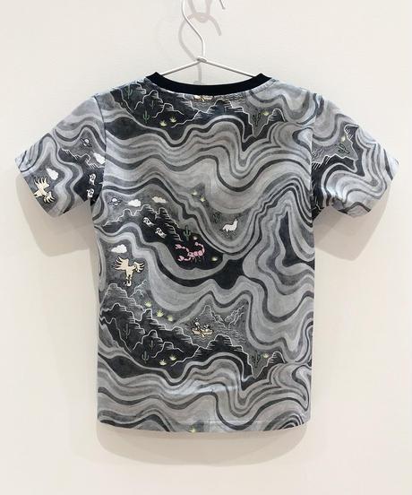 マーブルグランドキャニオンキッズTシャツ (grey)