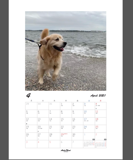 オーダー オリジナルカレンダー 2021年度版