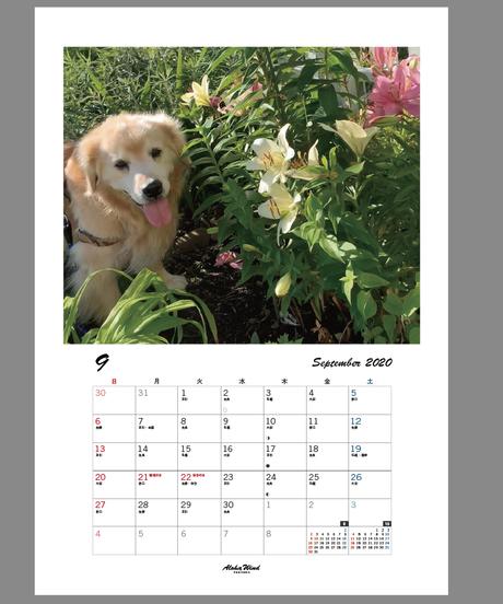 オーダー オリジナルカレンダー2020