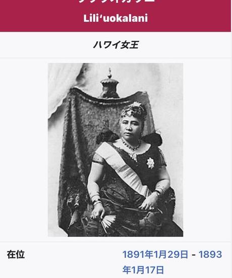 1点物 1994年 シルバー.999純銀 リリウオカラニ女王 ハワイコインネックレス($370)