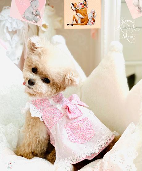 ※在庫終わり次第販売終了※Mサイズ【Botanical Love】Sweetie Patissier Girls(スィーティパティシエガールズ)