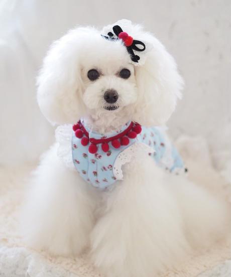 "【Sweetie Heidi】""Cherry-berry -bonbon""(チェリーベリーボンボン)バレッタ"