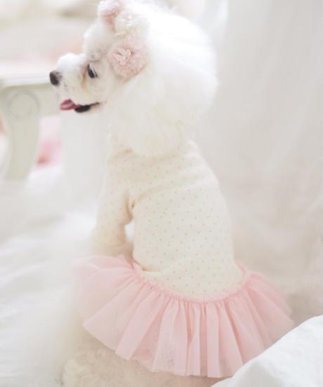 ※ご予約可能※Mサイズ【 AngelicMoon Chambre】Rose BeBe(ローズべべ)
