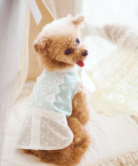 【 AngelicMoon Chambre】Lovely Cloudy Boys(ラブリークラウディボーイズ) Mサイズ