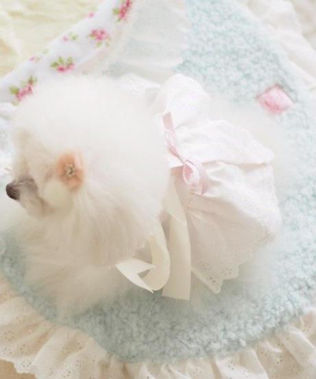 【Cafe Mat】Flower ×Soda(フラワーソーダ)